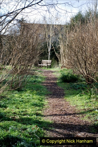 2020-02-27 The Courts Garden (NT) Holt, near Bradford on Avon, Wiltshire. (25) 277