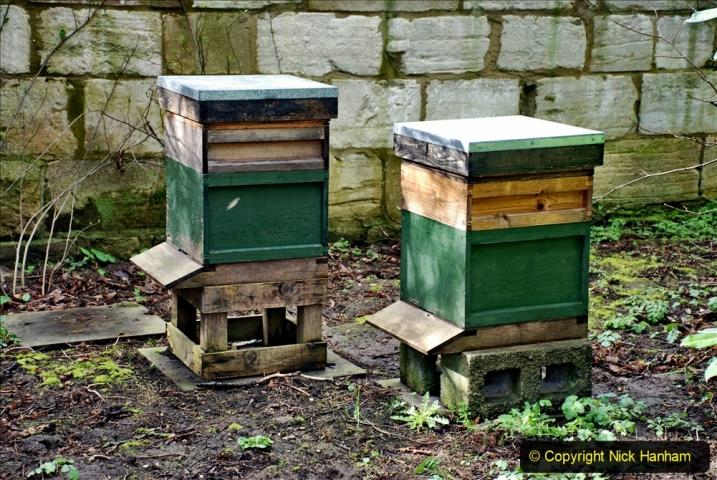 2020-02-27 The Courts Garden (NT) Holt, near Bradford on Avon, Wiltshire. (33) 285