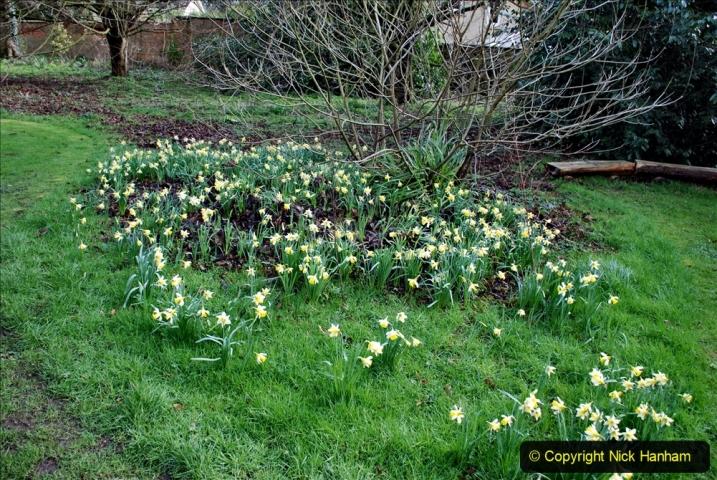 2020-02-27 The Courts Garden (NT) Holt, near Bradford on Avon, Wiltshire. (35) 287