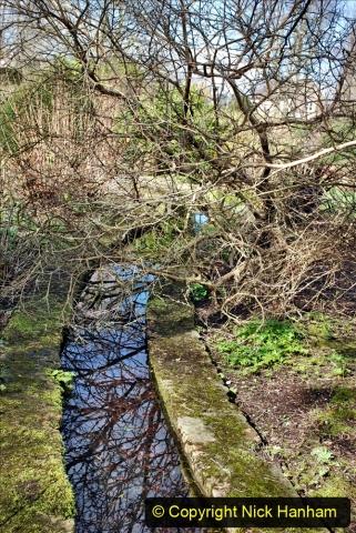 2020-02-27 The Courts Garden (NT) Holt, near Bradford on Avon, Wiltshire. (69) 321