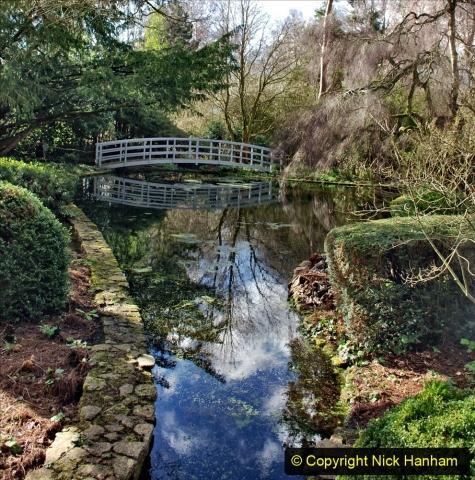 2020-02-27 The Courts Garden (NT) Holt, near Bradford on Avon, Wiltshire. (73) 325