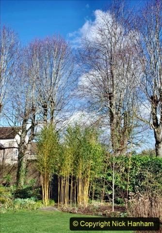 2020-02-27 The Courts Garden (NT) Holt, near Bradford on Avon, Wiltshire. (88) 340
