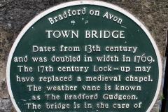 2020-02-26 Bradford on Avon, Wiltshire. (7) 155