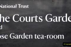 2020-02-27 The Courts Garden (NT) Holt, near Bradford on Avon, Wiltshire. (1) 253