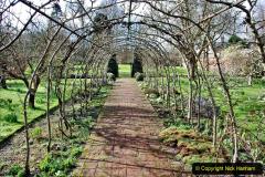 2020-02-27 The Courts Garden (NT) Holt, near Bradford on Avon, Wiltshire. (20) 272