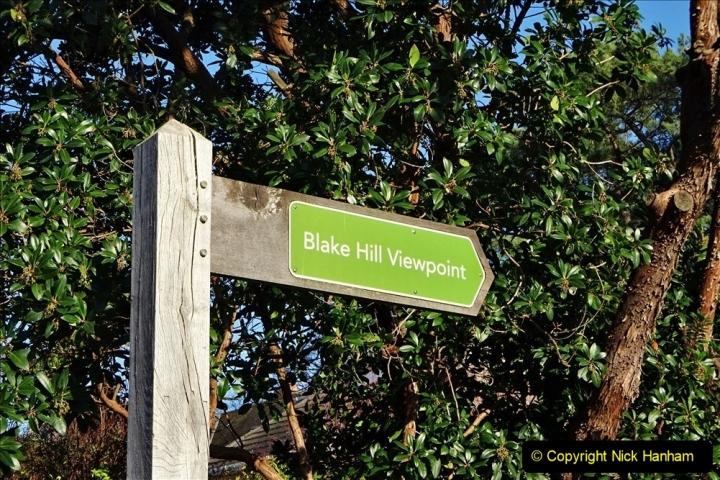 2020-01-01 Evening Hill, Poole, Dorset. (6) 006