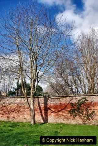 2020-02-27 The Courts Garden (NT) Holt, near Bradford on Avon, Wiltshire. (22) 274