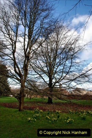 2020-02-27 The Courts Garden (NT) Holt, near Bradford on Avon, Wiltshire. (39) 291