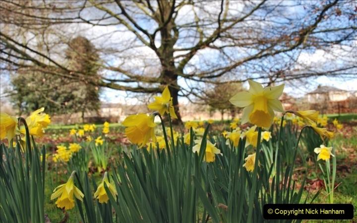 2020-02-27 The Courts Garden (NT) Holt, near Bradford on Avon, Wiltshire. (43) 295