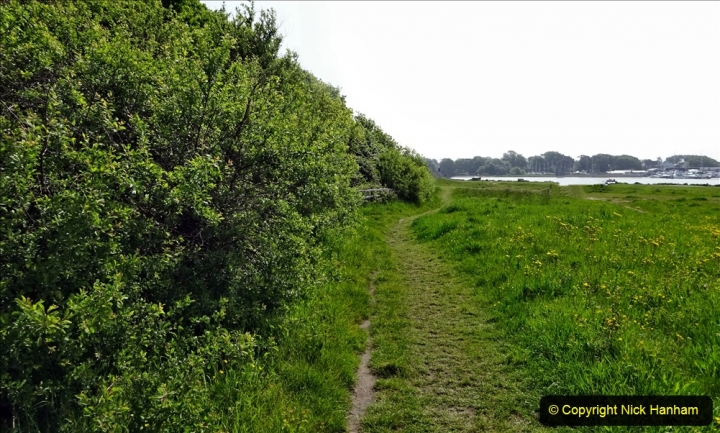 2020 May 09 Covid 19 Walk to Poole Dorset. (141) 141