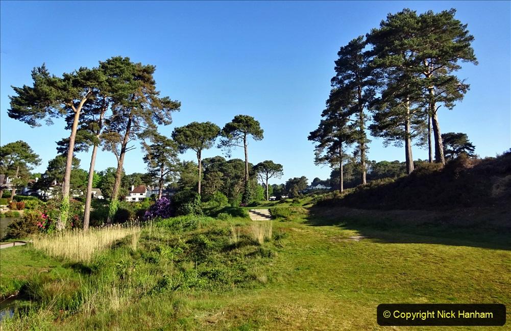2020-05-06 Covid 19 Walk Parkstone Golf Club second time.  (32) 032