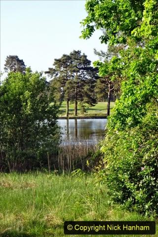 2020-05-06 Covid 19 Walk Parkstone Golf Club second time.  (11) 011