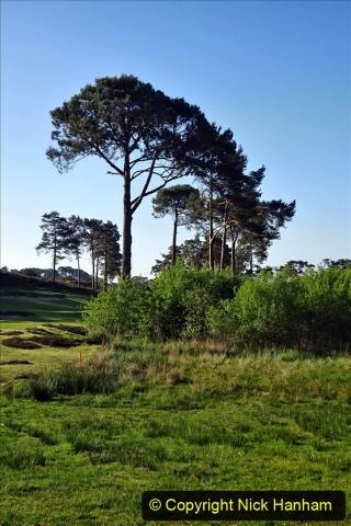 2020-05-06 Covid 19 Walk Parkstone Golf Club second time.  (12) 012