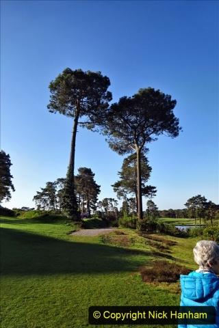 2020-05-06 Covid 19 Walk Parkstone Golf Club second time.  (13) 013