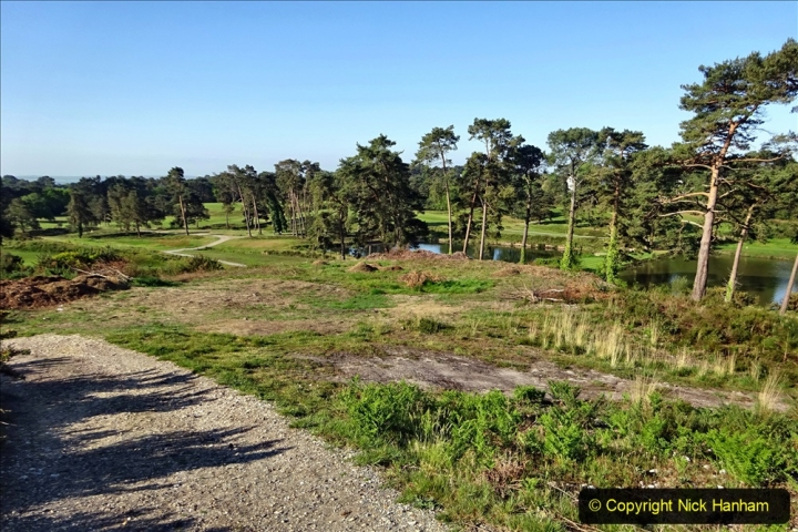 2020-05-06 Covid 19 Walk Parkstone Golf Club second time.  (35) 035