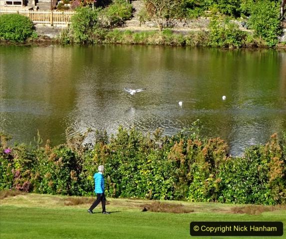 2020-05-06 Covid 19 Walk Parkstone Golf Club second time.  (40) 040
