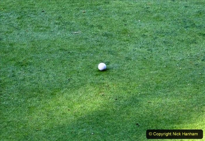 2020-05-06 Covid 19 Walk Parkstone Golf Club second time.  (43) 043