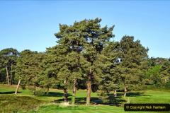 2020 -05-06 Covid 19 Walk Parkstone Golf Club second time.  (17) 017