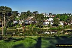 2020-05-06 Covid 19 Walk Parkstone Golf Club second time.  (37) 037