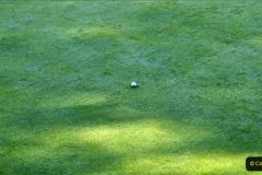 2020-05-06 Covid 19 Walk Parkstone Golf Club second time.  (44) 044