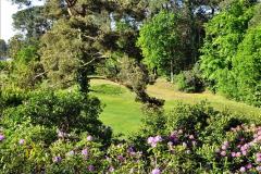 2020-05-06 Covid 19 Walk Parkstone Golf Club second time.  (48) 048