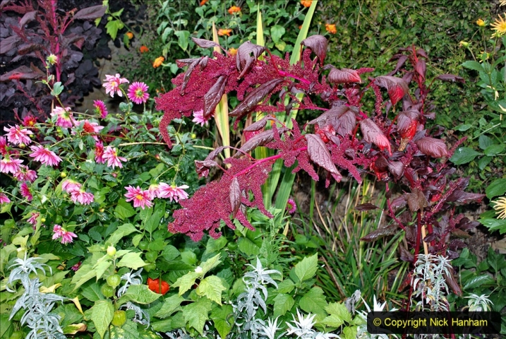 2020-09-30 Covid 19 Visit to Great Chalfield Manor & Gardens, Wiltshire. (115) 115