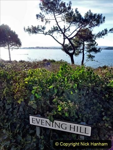 2021-01-15 Covid 19  Walk 2021 Evening Hill - Poole Quay - Trees. (1) 001