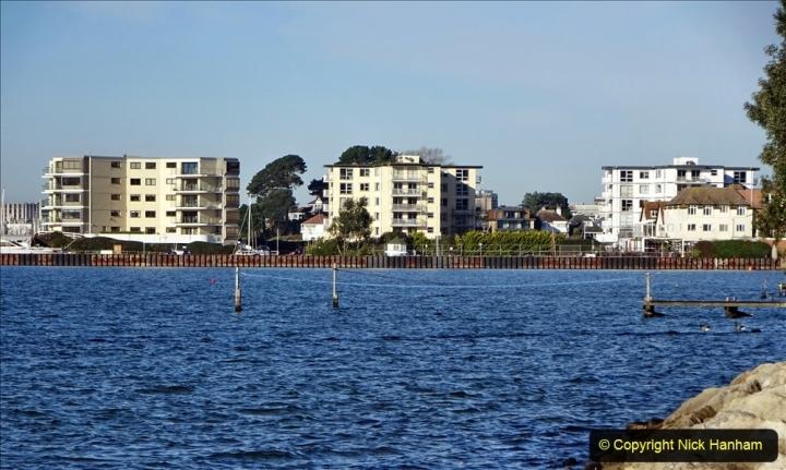 2021-01-15 Covid 19  Walk 2021 Evening Hill - Poole Quay - Trees. (5) 005