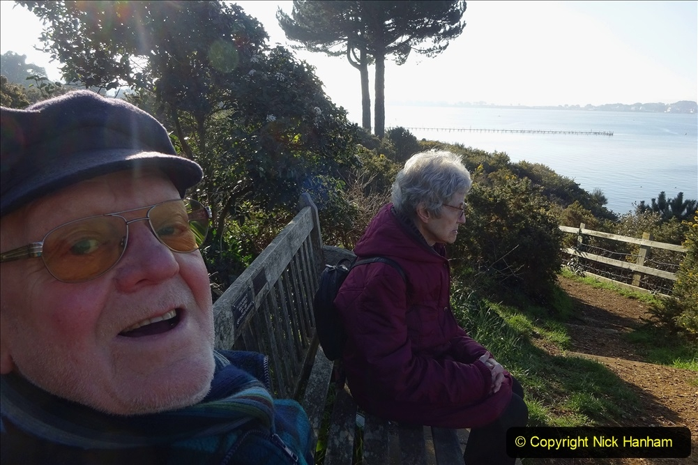 2021-02-28 Local Covid 19 Walk around the Evening Hill area of Poole. (38) 038