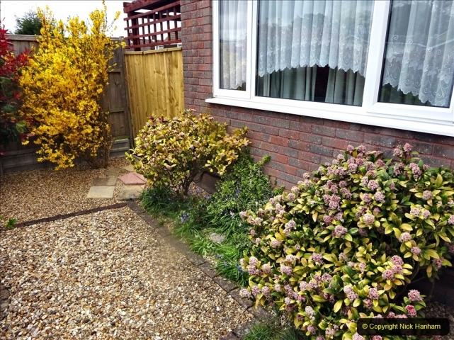 2021-04-08 Garden makeover progress so far. (3) Front garden. 004