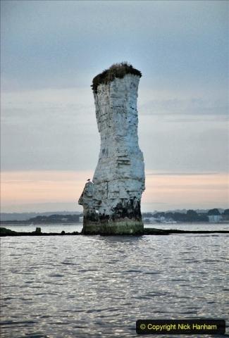 2021-08-14 SR Volunteers & Staff Boat trip & BBQ Poole Harbour & Poole Bay. (92) 092