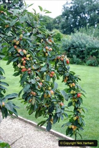 2021-08-18 National Trust Property Visit No.1. Hinton Ampner, Hampshire. (58) 058