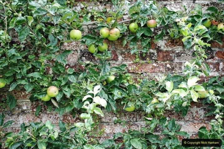 2021-08-18 National Trust Property Visit No.1. Hinton Ampner, Hampshire. (68) 068