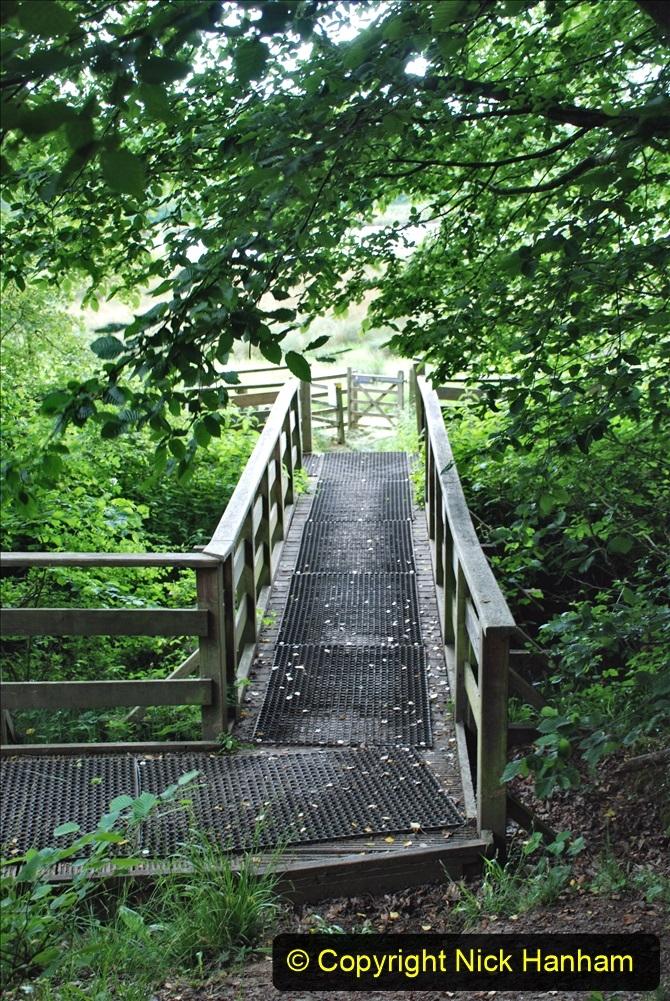 2021-06-10 The Vyne (National Trust) near Basingstoke, Hampshire. (27) 027