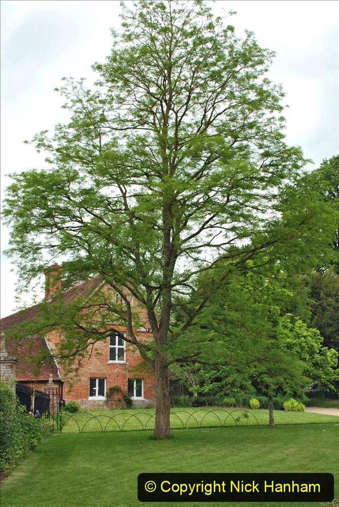 2021-06-10 The Vyne (National Trust) near Basingstoke, Hampshire. (60) 060