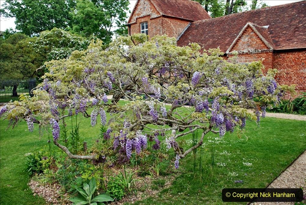 2021-06-10 The Vyne (National Trust) near Basingstoke, Hampshire. (61) 061