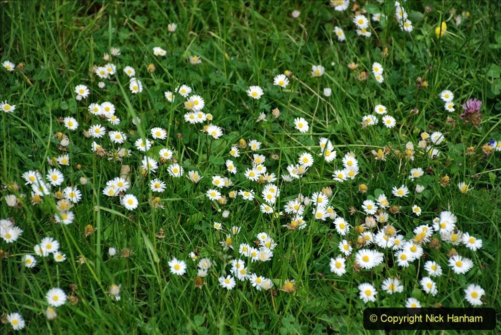 2021-06-10 The Vyne (National Trust) near Basingstoke, Hampshire. (89) 089