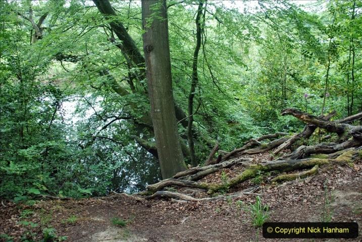 2021-06-10 The Vyne (National Trust) near Basingstoke, Hampshire. (26) 026