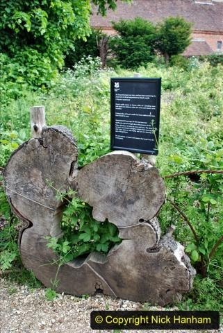 2021-06-10 The Vyne (National Trust) near Basingstoke, Hampshire. (77) 077