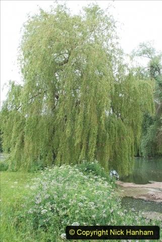 2021-06-10 The Vyne (National Trust) near Basingstoke, Hampshire. (95) 095