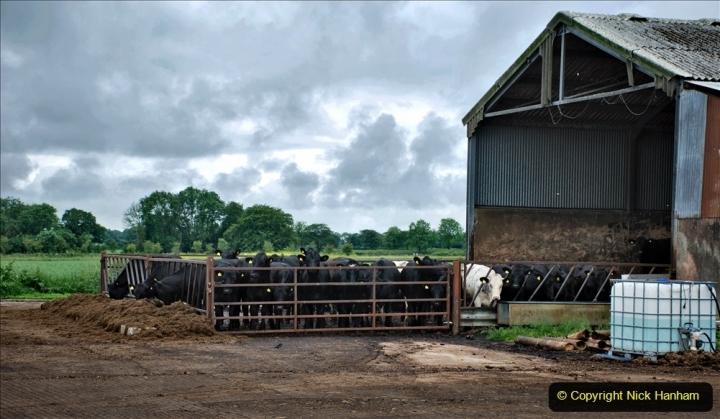 2021-06-26 The Devon Truck Show. (7) Entrance to the show via a farm yard. 007