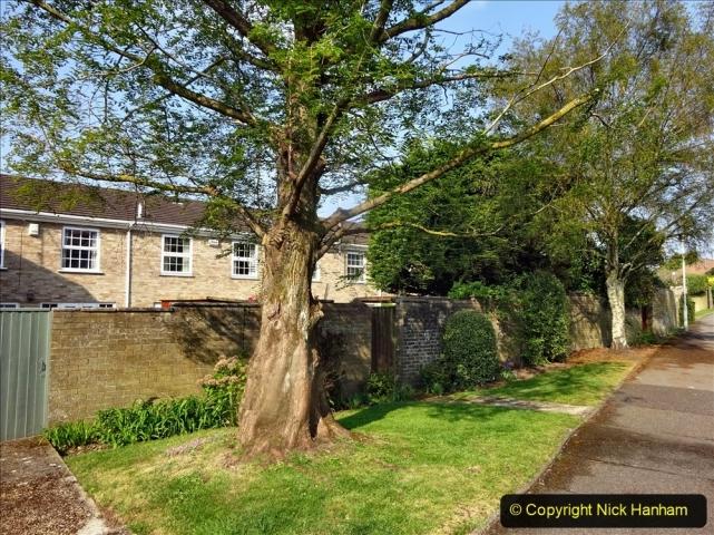 2021-05-01 Local Covid 19 Walk Poole, Dorset. (10) 010