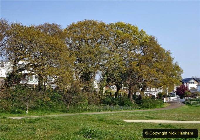 2021-05-01 Local Covid 19 Walk Poole, Dorset. (42) 042