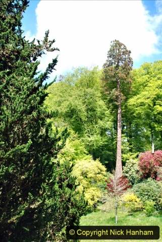 2021-05-17 Wiltshire Holiday Day 1. (125) Stourhead NT. 125