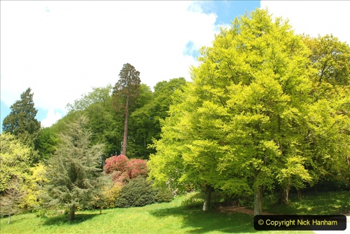 2021-05-17 Wiltshire Holiday Day 1. (128) Stourhead NT. 128