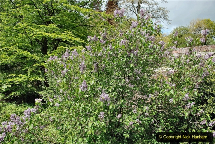 2021-05-17 Wiltshire Holiday Day 1. (13) Stourhead NT. 013