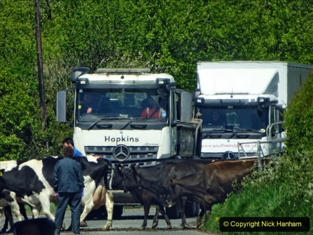 2021-05-17 Wiltshire Holiday Day 1. (149) 149