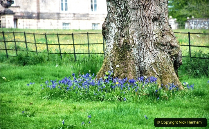 2021-05-17 Wiltshire Holiday Day 1. (19) Stourhead NT. 019