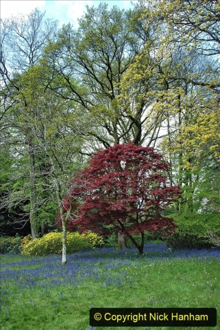 2021-05-17 Wiltshire Holiday Day 1. (23) Stourhead NT. 023