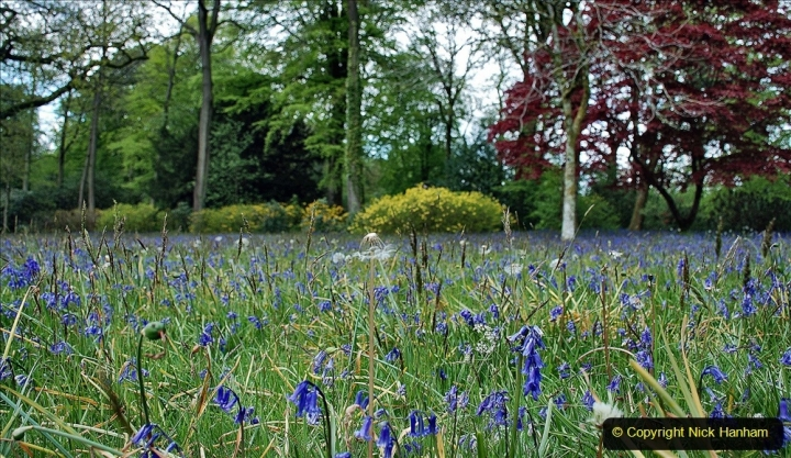 2021-05-17 Wiltshire Holiday Day 1. (24) Stourhead NT. 024